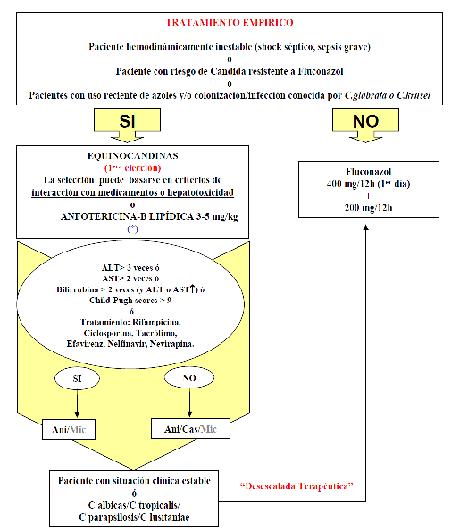 Figura 1. Esquema del protocolo de tratamiento de la candidiasis del HGUCR.