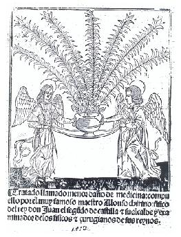 Figura 2. Portada del Tratado llamado del menor  daño de medicina. 1513.